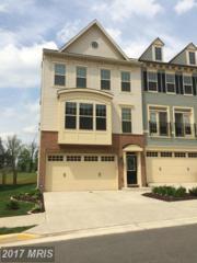 43330 Semolina Terrace, Chantilly, VA 20152 (#LO9931222) :: LoCoMusings