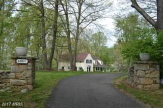 23031 St Louis Road, Middleburg, VA 20117 (#LO9931668) :: Pearson Smith Realty