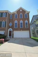 41813 Eloquence Terrace, Aldie, VA 20105 (#LO9931710) :: Pearson Smith Realty