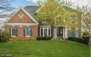 24188 Spring Meadow Circle, Aldie, VA 20105 (#LO9932224) :: Pearson Smith Realty