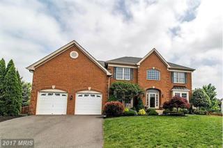 43413 Wheatlands Chase Court, Ashburn, VA 20148 (#LO9932532) :: Pearson Smith Realty