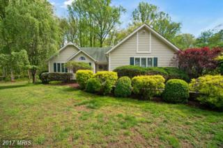 37015 North Fork Road, Purcellville, VA 20132 (#LO9932729) :: Pearson Smith Realty