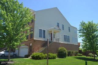 828 Maple Flats Terrace, Purcellville, VA 20132 (#LO9934187) :: Pearson Smith Realty