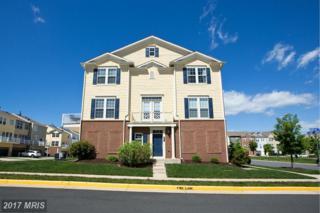 513 Flameflower Terrace SE, Leesburg, VA 20175 (#LO9934260) :: Pearson Smith Realty