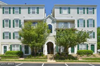 45500 Whistling Terrace #303, Sterling, VA 20166 (#LO9935231) :: Pearson Smith Realty