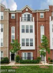 20640 Sibbald Square, Ashburn, VA 20147 (#LO9935673) :: Pearson Smith Realty
