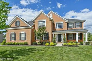 24538 Fishermans Pond Court, Aldie, VA 20105 (#LO9935896) :: Pearson Smith Realty