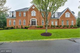 41605 Swiftwater Drive, Leesburg, VA 20176 (#LO9936021) :: Pearson Smith Realty