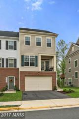 25238 Demilton Terrace, Chantilly, VA 20152 (#LO9936144) :: Pearson Smith Realty
