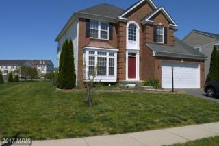 25319 Supreme Drive, Aldie, VA 20105 (#LO9936228) :: Pearson Smith Realty