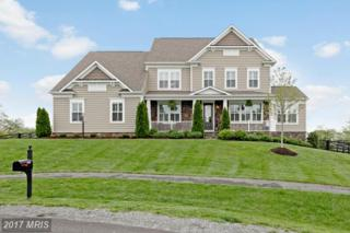 15722 Trongate Court, Leesburg, VA 20176 (#LO9937132) :: Pearson Smith Realty