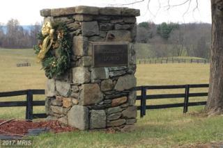 23460 Mersey Road, Middleburg, VA 20117 (#LO9937218) :: Pearson Smith Realty