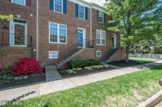 42937 Chesterton Street, Ashburn, VA 20147 (#LO9937230) :: Pearson Smith Realty