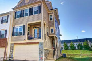 42291 Demarco Terrace, Chantilly, VA 20152 (#LO9937373) :: Pearson Smith Realty