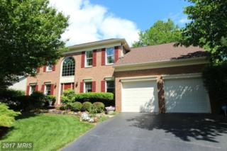 47182 Brasswood Place, Sterling, VA 20165 (#LO9937461) :: Pearson Smith Realty