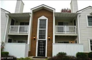 102 Westwick Court #7, Sterling, VA 20165 (#LO9937529) :: Pearson Smith Realty