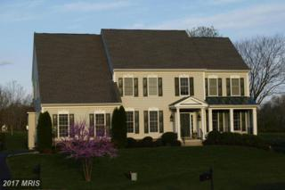 37527 Oak Green Lane, Purcellville, VA 20132 (#LO9937599) :: Pearson Smith Realty
