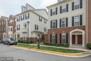 41813 Inspiration Terrace #41813, Aldie, VA 20105 (#LO9937707) :: Pearson Smith Realty