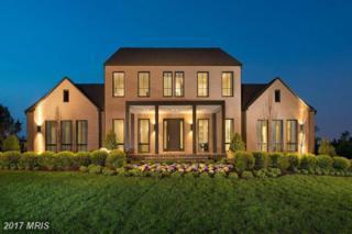 0 Abbey Knoll Court, Ashburn, VA 20148 (#LO9938022) :: Pearson Smith Realty