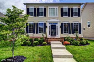 806 Kinvarra Place, Purcellville, VA 20132 (#LO9938307) :: Pearson Smith Realty