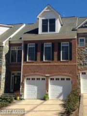 18228 Cypress Point Terrace, Leesburg, VA 20176 (#LO9938412) :: Pearson Smith Realty