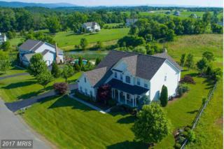 38790 Dutchman Knoll Drive, Lovettsville, VA 20180 (#LO9938602) :: Pearson Smith Realty
