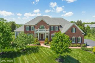 42696 Red Shale Court, Ashburn, VA 20148 (#LO9938811) :: Pearson Smith Realty