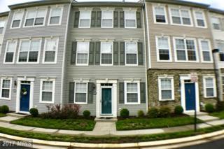 21840 Jarvis Square, Ashburn, VA 20147 (#LO9939112) :: Pearson Smith Realty