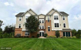 43415 Madison Renee Terrace #101, Ashburn, VA 20147 (#LO9939588) :: Pearson Smith Realty