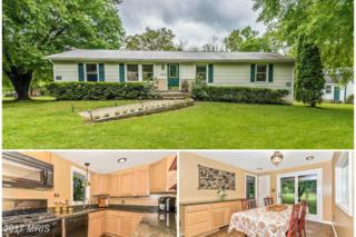 38173 Stevens Road, Lovettsville, VA 20180 (#LO9939812) :: Pearson Smith Realty