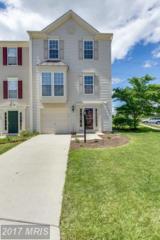 25177 Creation Terrace, Aldie, VA 20105 (#LO9939851) :: Pearson Smith Realty