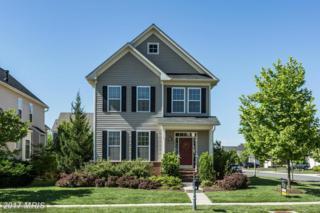 42049 Greenstone Drive, Aldie, VA 20105 (#LO9941103) :: Pearson Smith Realty