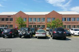 44355 Premier Plaza #220, Ashburn, VA 20147 (#LO9941206) :: Pearson Smith Realty