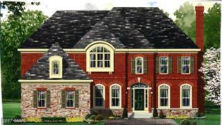 0 Harmony Vista Drive, Hamilton, VA 20158 (#LO9941445) :: Pearson Smith Realty