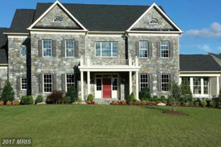0 Harmony Vista Drive, Hamilton, VA 20158 (#LO9941481) :: Pearson Smith Realty