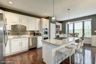 900 Buttonwood Terrace NE, Leesburg, VA 20176 (#LO9941717) :: Pearson Smith Realty