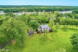 42476 Whites Ferry Road, Leesburg, VA 20176 (#LO9941994) :: Pearson Smith Realty