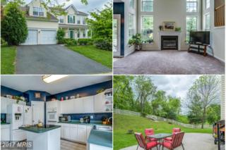 17260 Arrowood Place, Round Hill, VA 20141 (#LO9942002) :: Pearson Smith Realty