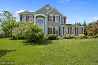 717 Sunflower Court, Purcellville, VA 20132 (#LO9943104) :: Pearson Smith Realty