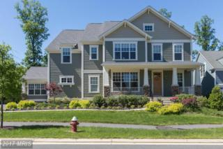 41145 Sheffield Forest Drive, Aldie, VA 20105 (#LO9943167) :: Pearson Smith Realty