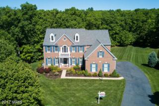 42830 Falling Leaf Court, Ashburn, VA 20148 (#LO9943172) :: Pearson Smith Realty