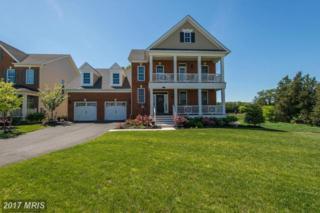 24267 Purple Finch Drive, Aldie, VA 20105 (#LO9944047) :: Pearson Smith Realty
