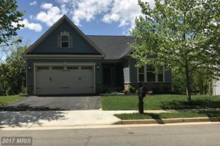 0044 Cooper Run Drive, Lovettsville, VA 20180 (#LO9944201) :: Pearson Smith Realty