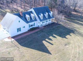 37587 Hughesville Road, Purcellville, VA 20132 (#LO9944813) :: Pearson Smith Realty