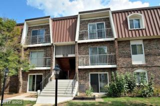 221 Emory Drive #1, Sterling, VA 20164 (#LO9946253) :: Pearson Smith Realty