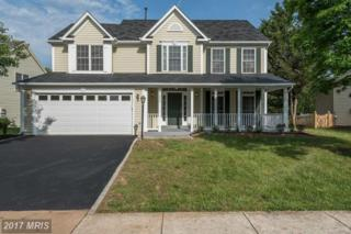 43953 Bruceton Mills Circle, Ashburn, VA 20147 (#LO9946359) :: Wicker Homes Group