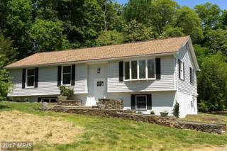 20798 Furr Road, Round Hill, VA 20141 (#LO9946417) :: Pearson Smith Realty