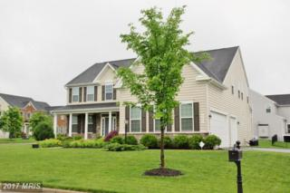 42486 Fawn Meadow Place, Chantilly, VA 20152 (#LO9946533) :: Pearson Smith Realty