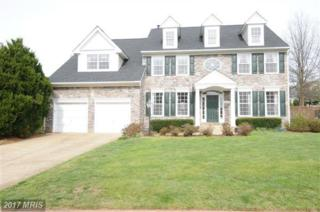 20884 Great Falls Forest Drive, Sterling, VA 20165 (#LO9946611) :: Pearson Smith Realty