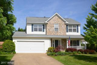 513 Rosemary Lane, Purcellville, VA 20132 (#LO9946627) :: Pearson Smith Realty